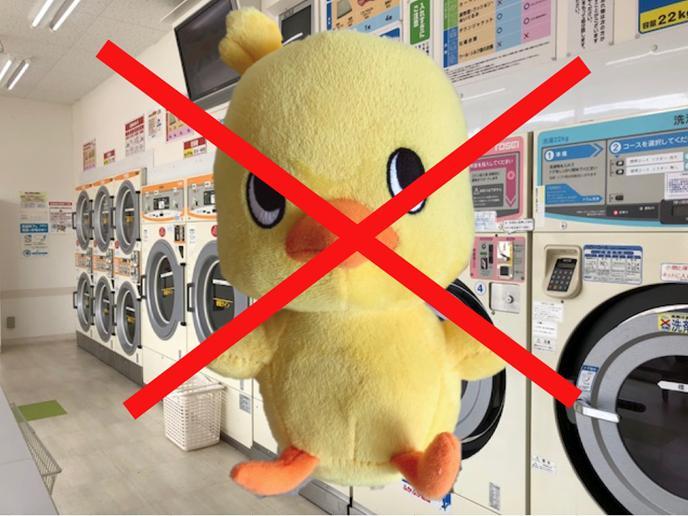 洗濯 大きい ぬいぐるみ